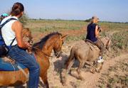 Рассказ Николая Носова о конном водном походе в Венесуэле маршрут по Южной Америке